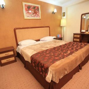 Alaedin-Travel-Agency-Yasuj-Parsian-Azadi-Hotel-Double-Room-1