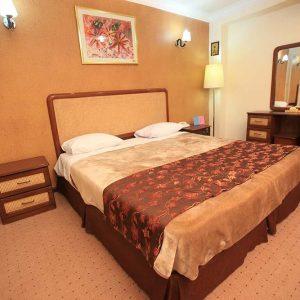 Alaedin-Travel-Agency-Yasuj-Parsian-Azadi-Hotel-Double-Room-1